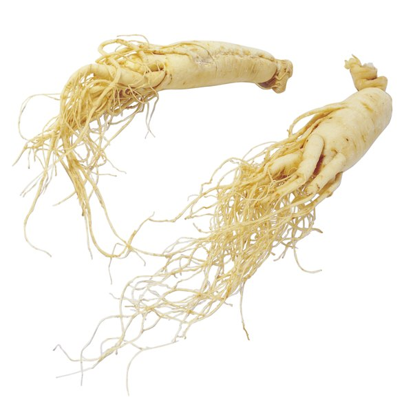 Ginseng root on a white background.