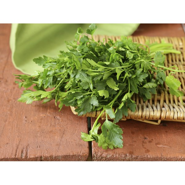 Fresh parsley on a wicker tray.