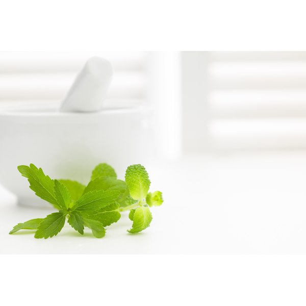 A sprig of mint sits next to a mortar and pestle.