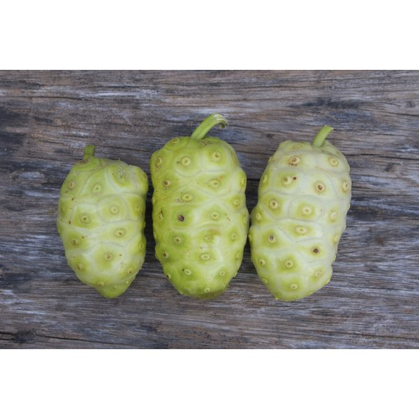 Tahitian noni fruit on wooden background.