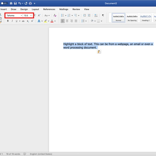 Screenshot of determining font size in MS Word.