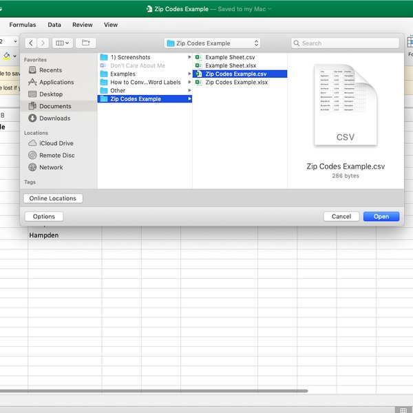 Screenshot of opening Excel .csv file.