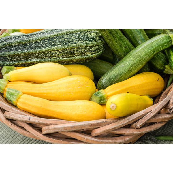 Can Yellow Squash Be Substituted for Zucchini When Baking?