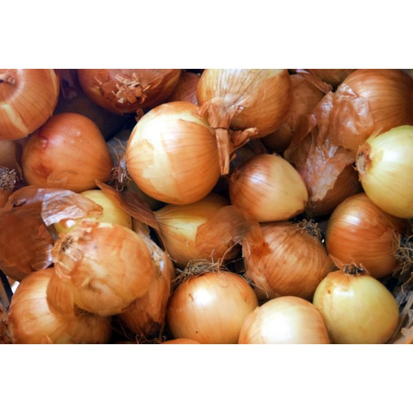 Choose onions that are firm and ripe.