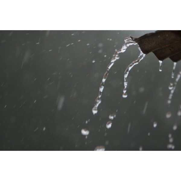 Without rainfall on the earth, life would cease to exist.