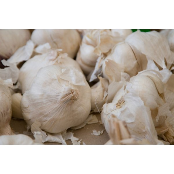 Garlic may speed recovery from bronchitis.