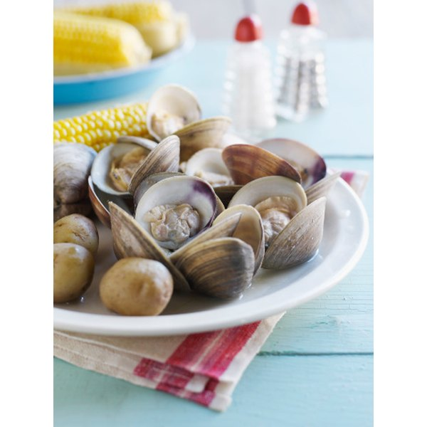 There are many varieties of clams, all of them edible.
