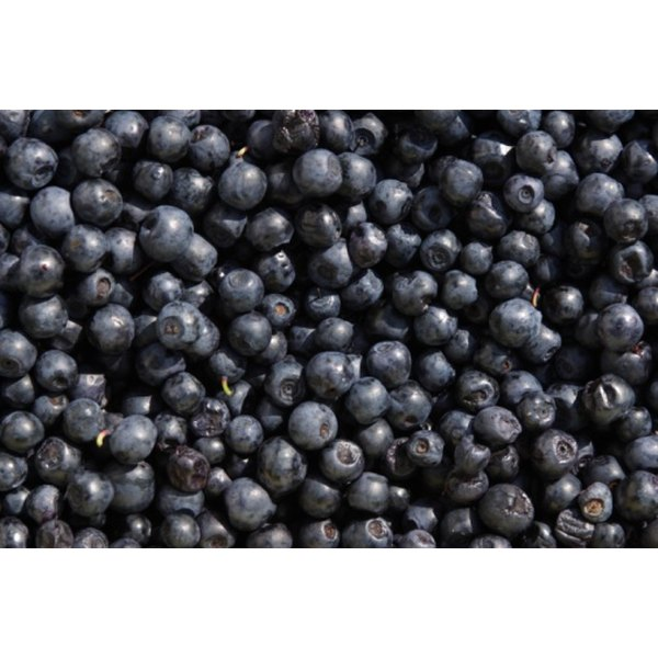 Blueberries can help resolve unpleasant and unhealthy skin conditions.