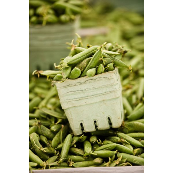 Fresh green beans are low in calories and contain many vitamins and minerals.
