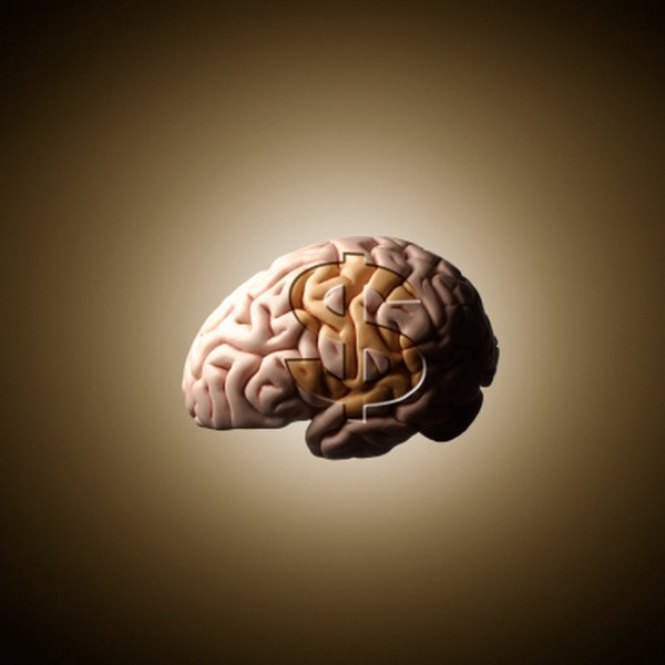 The human brain is a complex physiological machine.