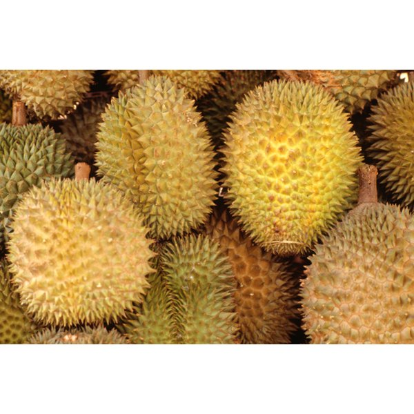 Durian, like other fruits, can be part of a healthy diet.