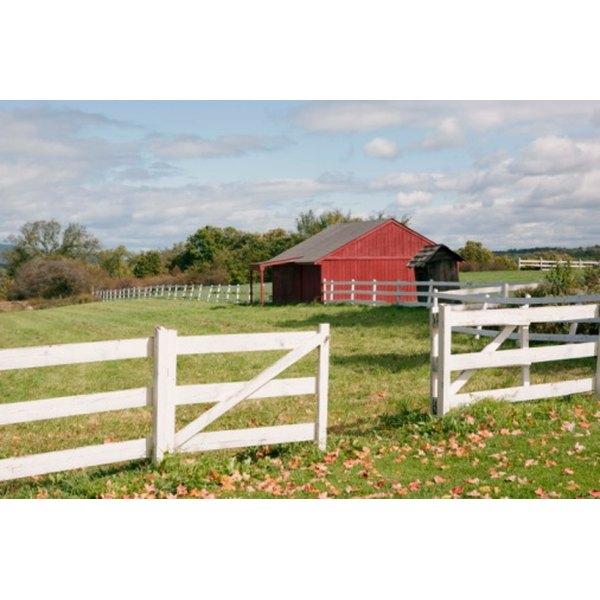 Farm Scavenger Hunt Ideas | Synonym