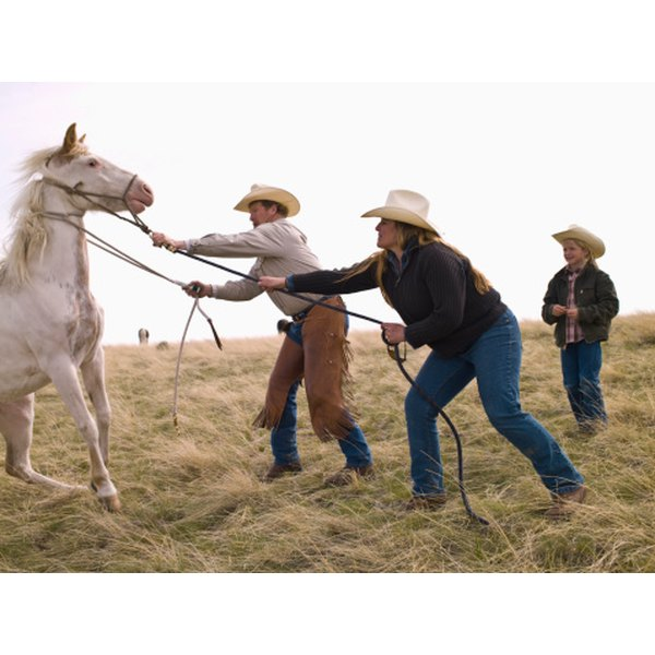 The cowboy hat is an essential tool for many ranchers.
