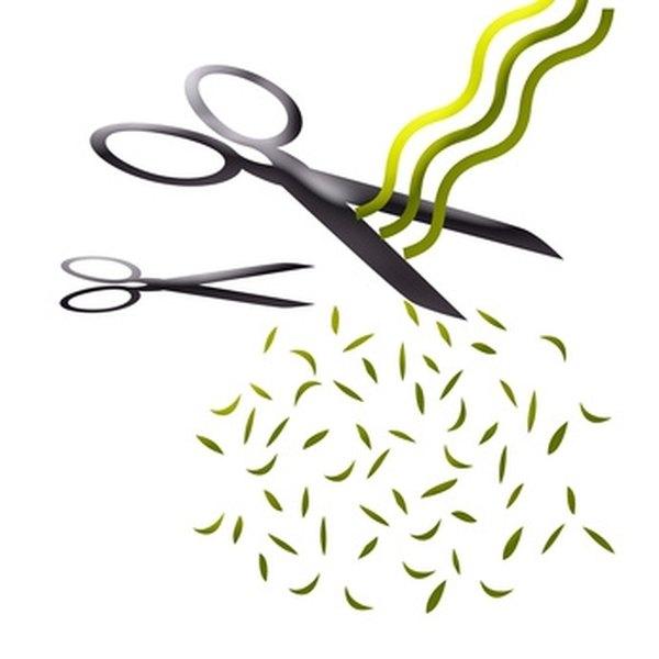 Cut Hair With a Beveled Edge