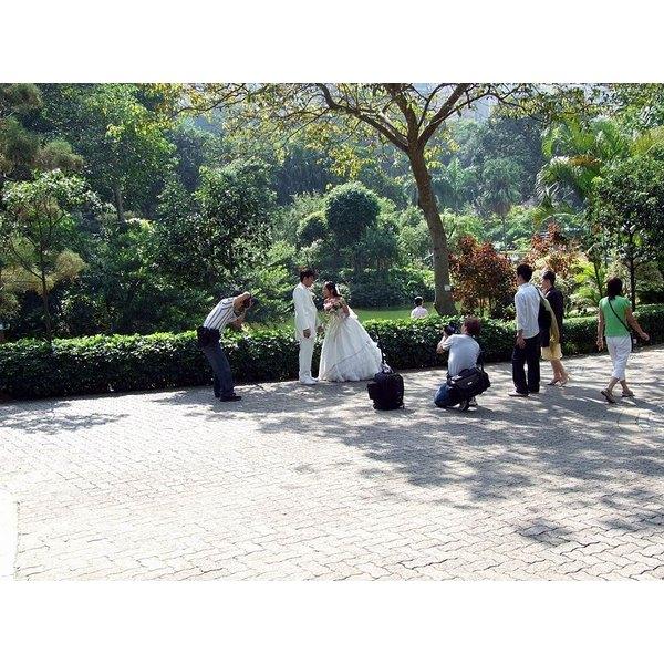 Park Wedding Example