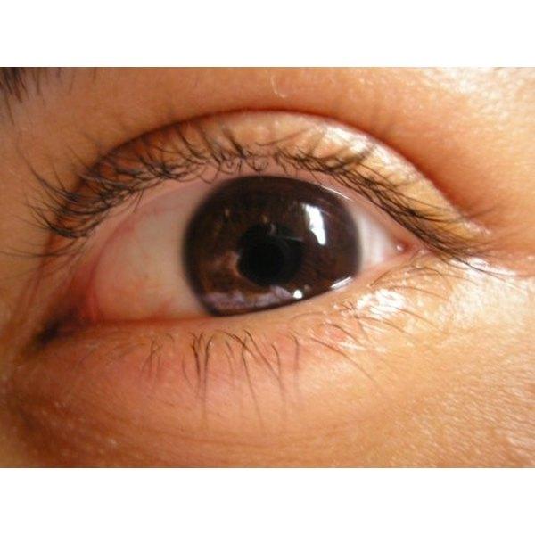 Regrowing Eyelashes