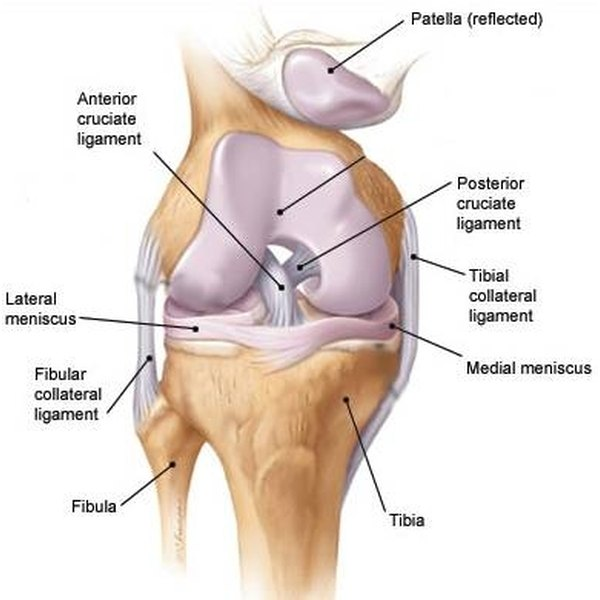 How to Diagnose Knee Pain | Healthfully