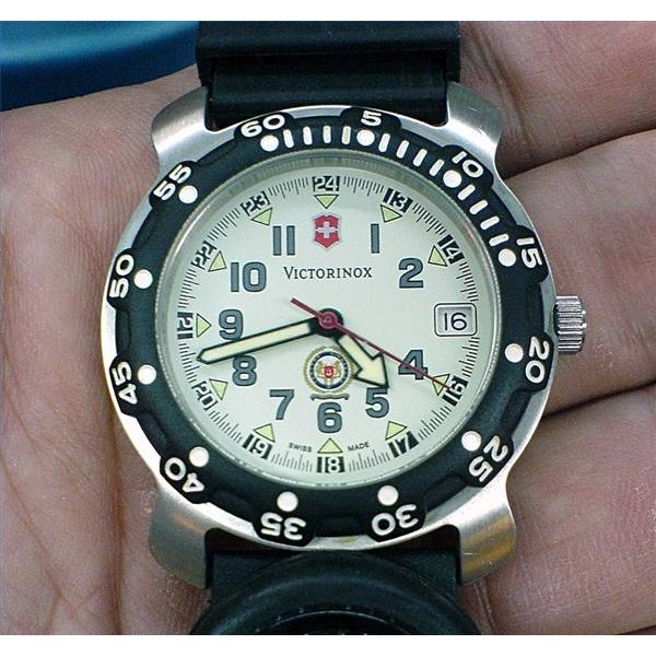 Adjust a Swiss Army Stainless Steel Watch Band