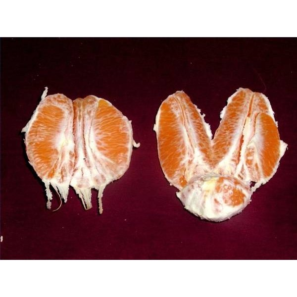 Information About the Orange Fruit