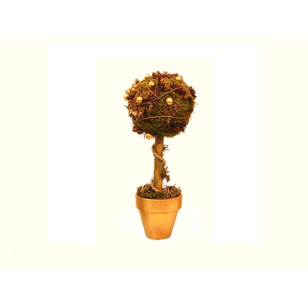 Make a pomander tree with the studded apple for a table decoration.