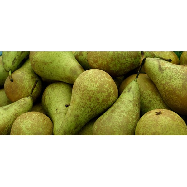 Choose firm, ripe green pears and let them ripen further before dry freezing.