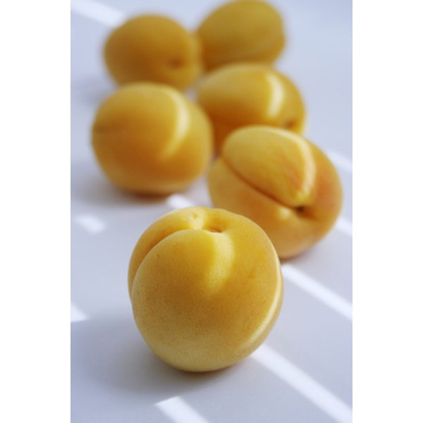 The apricot kernel has high vitamin B17