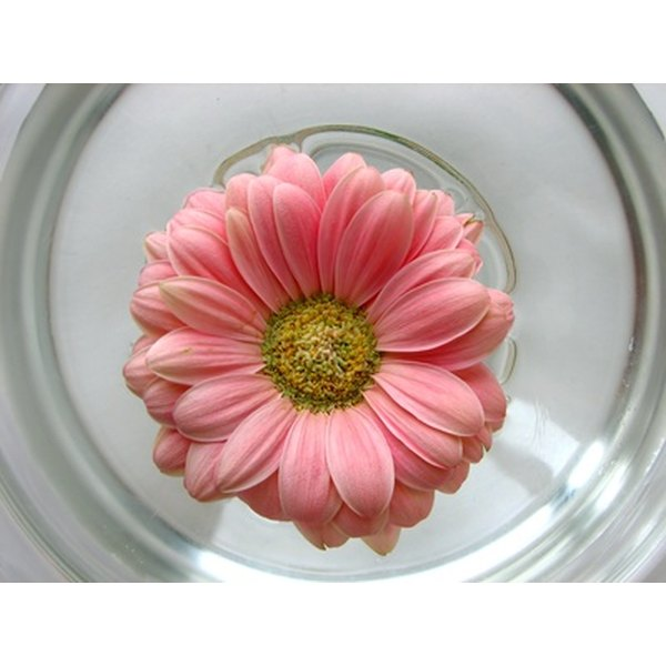 Use gerbera daisies to add color to your table.