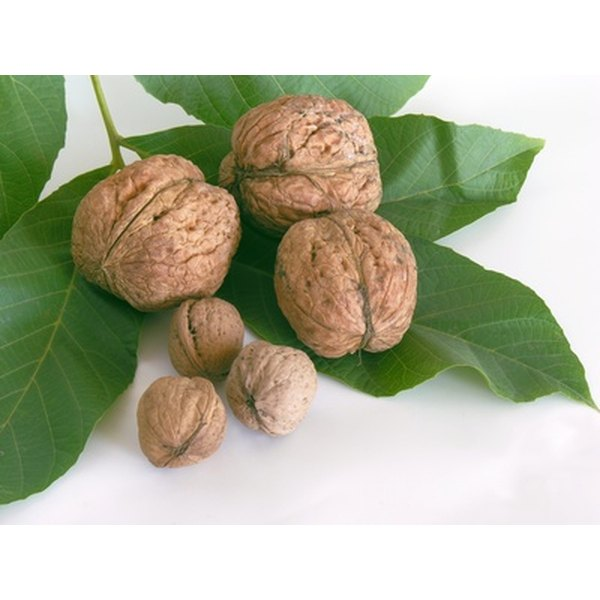 Caramelized walnuts are simple to make and add flavor to pasta dishes, chicken and salads.