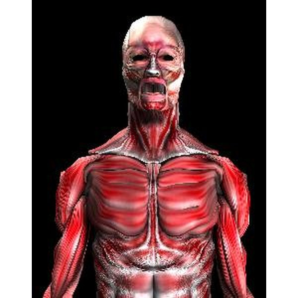 Muscle tightness affects the whole body.