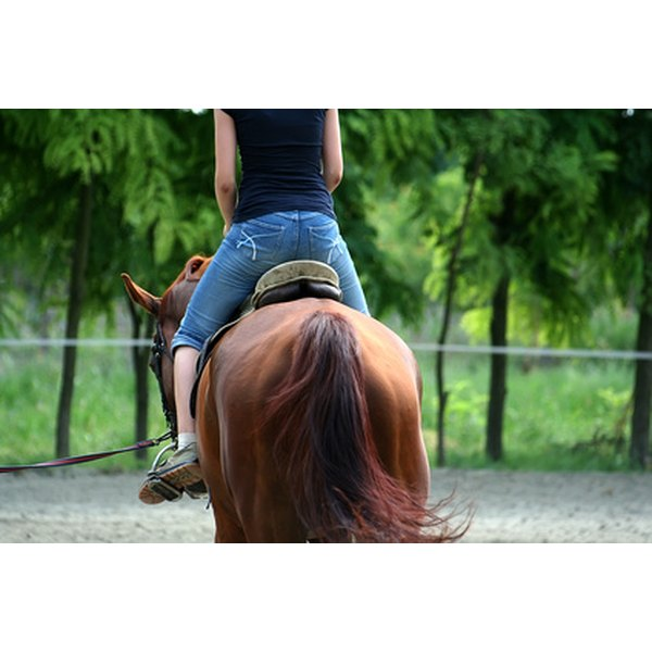 Hippotherapy and therapeutic riding help children with autism.