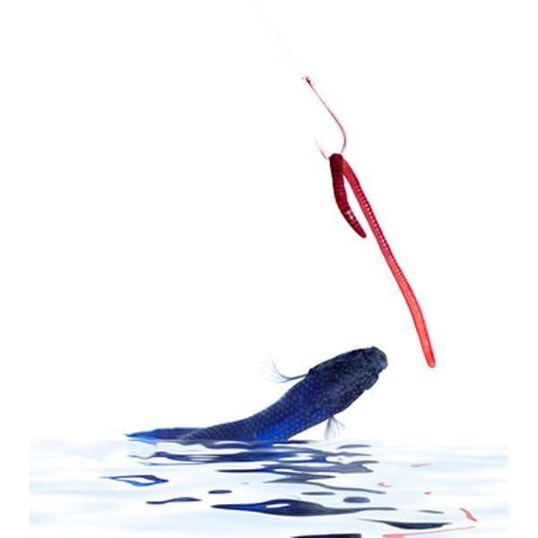 Plastic worm lures are the keystones of bass fishing.