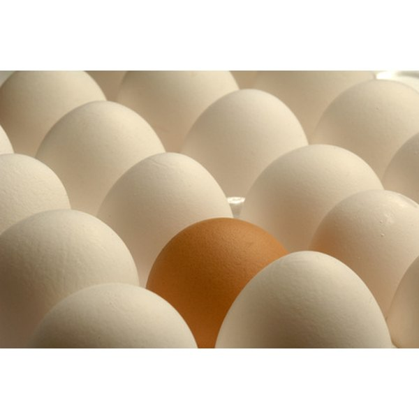 Eggs are a great high-protein food for meals or snacks.