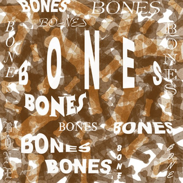 Three little bones in the middle hear help you in hearing.