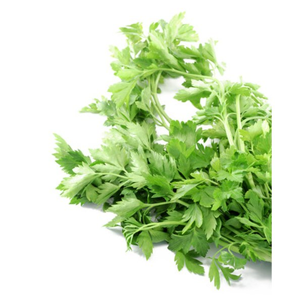 Fresh parsley can remove dark spots from the toes.