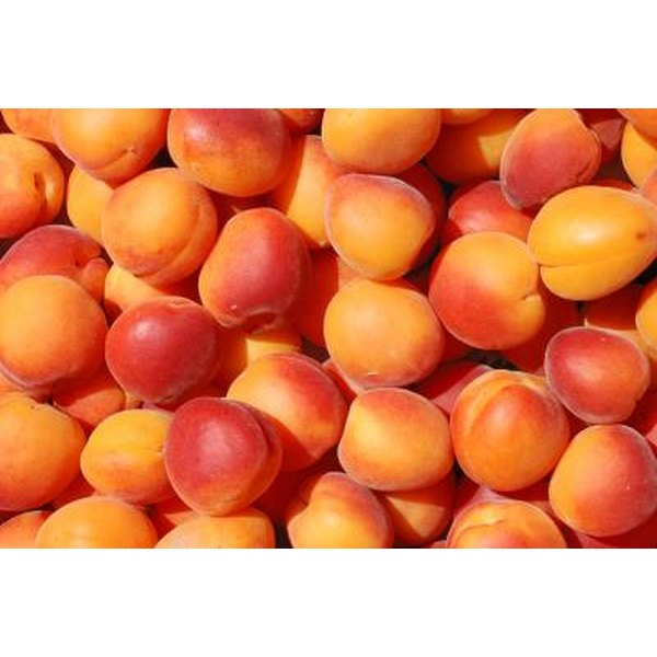 Apricots are typically a yellow to orange color.