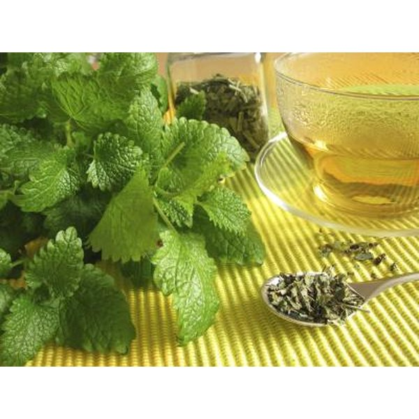 Lemon balm may be used internally or topically to help relieve stress.