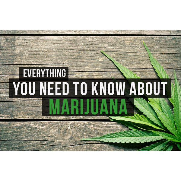 Test your knowledge of marijuana and how it works in your body.