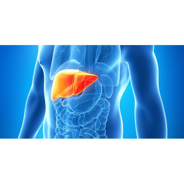 Untreated Hep C can lead to cirrhosis, liver failure or liver cancer