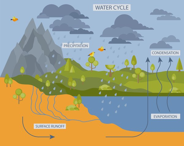 Here's how the water cycle looks in nature.