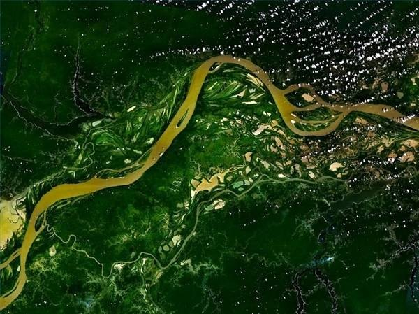 Amazon River flowing through the Rainforest