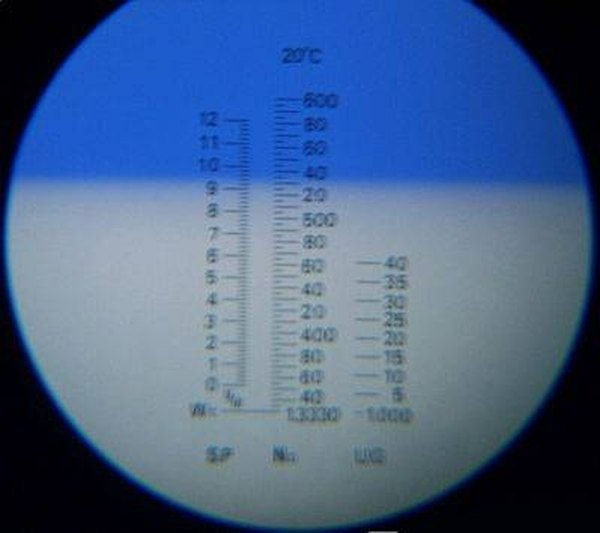 View through refractometer eyepiece with blue and white line delineation. Author: Uwe Gille
