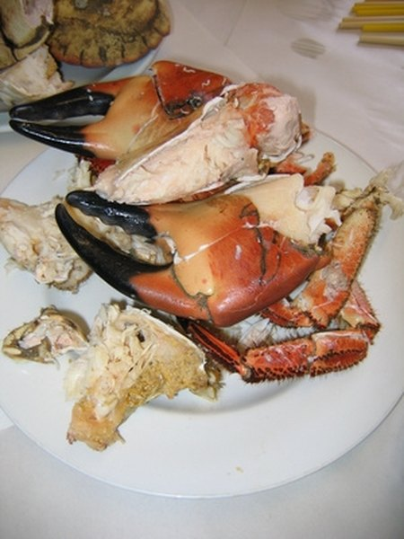 How to Remove Stone Crab Claws