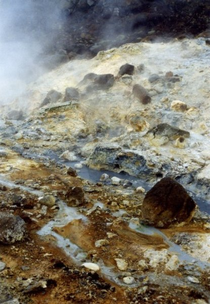 Chemoheterotrophs can acquire energy from thermal vents.
