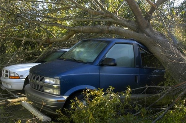 If a tree falls on your car, you may be able to deduct the loss.