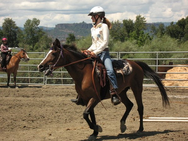 Donated horses often serve in therapy riding centers.