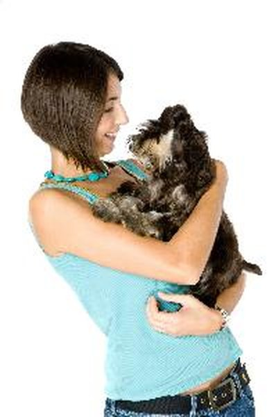 How To Train A Puppy To Use A Pad Go Outside Pets