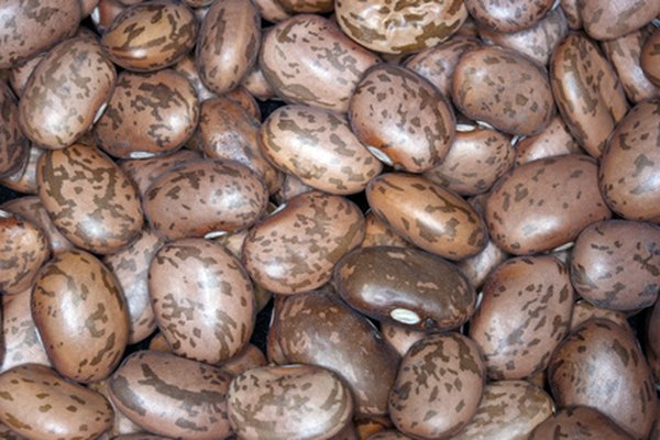 Pinto Beans Nutrition Facts | Live Well