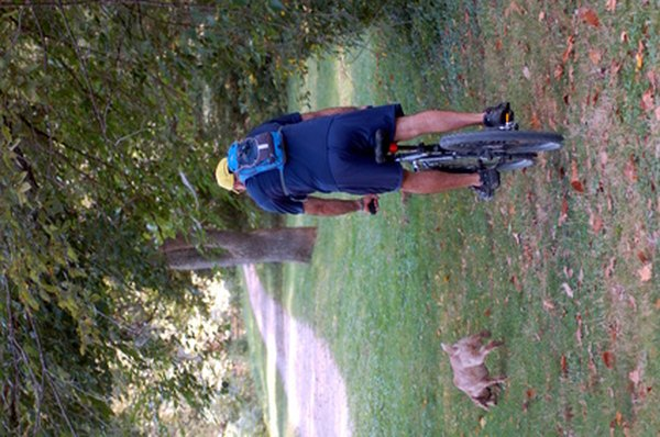 Bicycling with your dog is good exercise for both of you, but keeping him safe comes first.