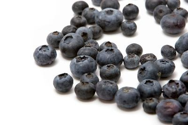 Benefits of Blueberries for the Eyes | Healthy Eating | SF Gate