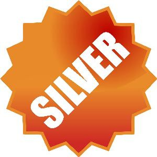 Silver bars are generally taxed at collectibles rates rather than as regular capital gains.